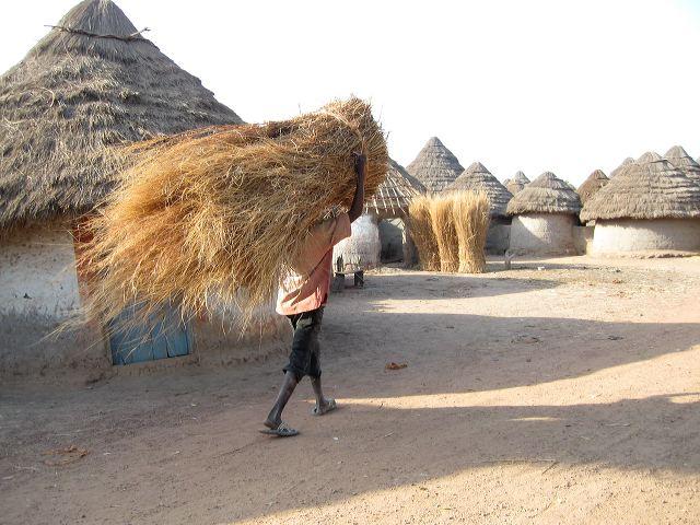 Foto Baro - der Dachdecker unterwegs