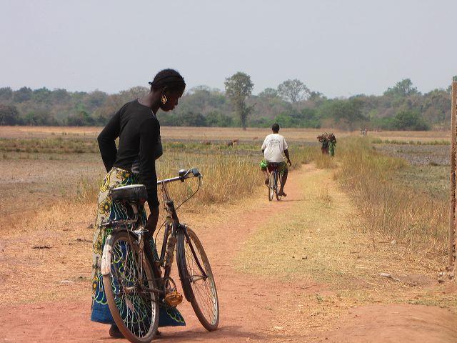 Foto aus Baro - der Weg zum Fluss